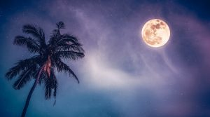 Read more about the article Full Moon in Libra – 28 March 2021